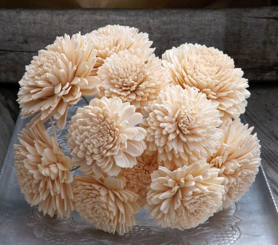 12 Light Peach Stemmed Sola Flowers Dahlia 3\