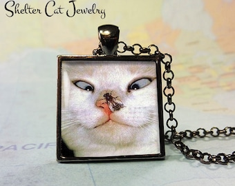 "Funny Cat and Fly Pendant - 1"" Square Pendant Necklace or Key Ring - Handmade Wearable Shelter Cats Photo Art Jewelry"