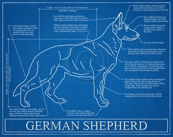 Australian shepherd blueprint elevation australian shepherd german shepherd blueprint elevation german shepherd art german shepherd wall art german shepherd malvernweather Images