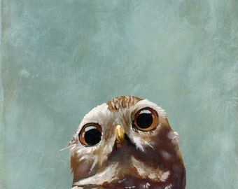 Moments When My Gaze Goes Vacant - 11 x 14 Art Print - Burrowing Owl - Giclee - Gift