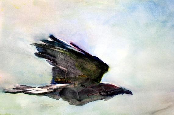 Raven - signed print - watercolor - Bonnie White - Raven - crow - ravens - crows - bird prints - avian prints
