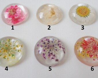 1 - 25mm Dried Floral Resin Cabochon