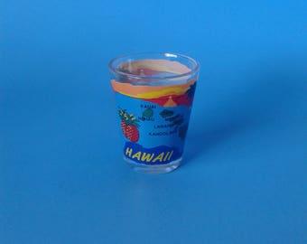 "Vintage Barware "" Shot Glass Hawaii State Souvenir "" Man Cave"