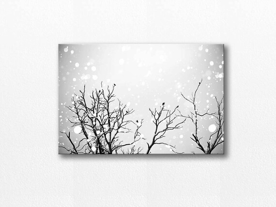 Winter birds canvas print black and white prints birds