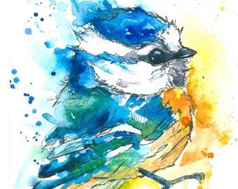 Bluetit Watercolour and Ink Print