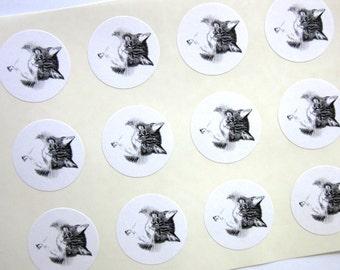 Kitten Cat Stickers One Inch Round Seals
