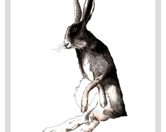 Hare - A3 print