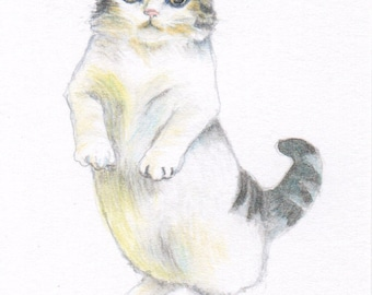 """cat drawing """"A Standing Cat """" cute cat lover gift unique for wall art desk decoration kid room nursery room decor"""