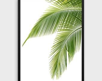 Tropical Leaf Print | palm leaf print, tropical print, tropical wall art, green decor, palm leaves, green palm art, leaves print, botanical