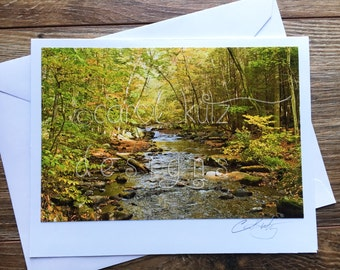 Fall Folaige Greeting Card with Envelope / Photograph Shot and Processed by Carol Kutz / Blank Greeting Card / All Occasion / Thank You Card