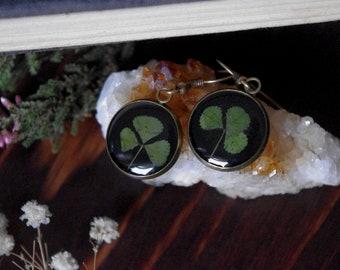 Clover jewelry earrings flower earrings clover irish jewelry resin earrings resin jewelry clover earrings green earrings nature earring gift