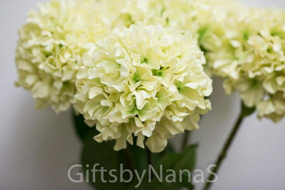 Ivory real touch hydrangea real touch flowers ivory silk hydrangea ivory real touch hydrangea real touch flowers ivory silk hydrangea wedding flowers silk flowers centerpiece flowers cheap silk flowers from mightylinksfo