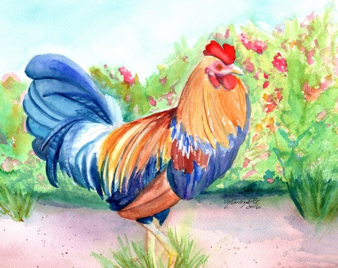Kauai Rooster, Rooster Painting, Rooster Art, Rooster Print, Hawaiian Chickens, Kitchen Paintings, Kauai Art, Kitchen Decor, Chickens