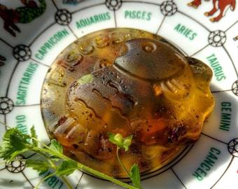 Zodiac Empowering Astrological Organic Honey Soap- Aquarius Pisces Aries Taurus Gemini Cancer Leo Virgo Libra Scorpio Sagittarius Capricorn