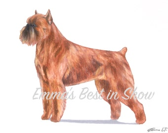 Brussels Griffon Dog - Archival Fine Art Print - AKC Best in Show Champion - Breed Standard - Toy Group - Original Art Print