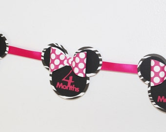 Minnie Mouse Zebra Monthly Banner - 12 Months - Hot Pink