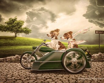 Motorcycle and side car digital background | digital backdrop | zoom zoom zoom | fast track | fantasy