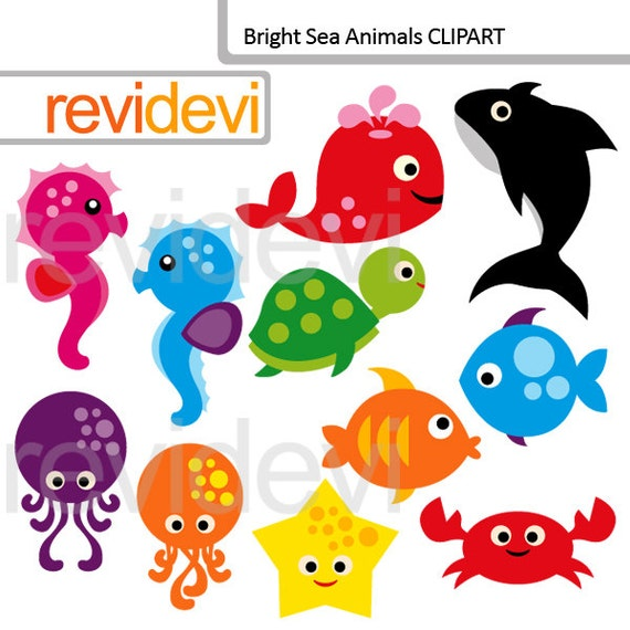 Sea animals clipart commercial use clip art Under the sea