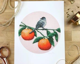 Catbird & Oranges - 8 x 10 Giclee Print - Orchard Birds 003