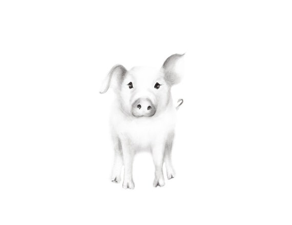 Pig art print farm animal nurserybaby animal grey nursery decor animal sketch print pencil drawing baby piglet childrens wall decor