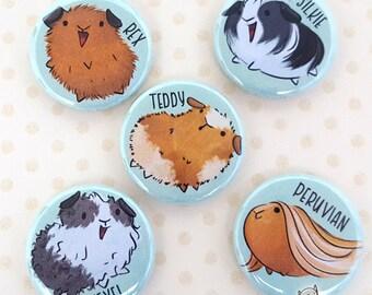Guinea pig magnets, guinea pig pins, guinea pig fridge magnet, guinea pig breeds, guinea pig gift, cute guinea pig, guinea pig lover