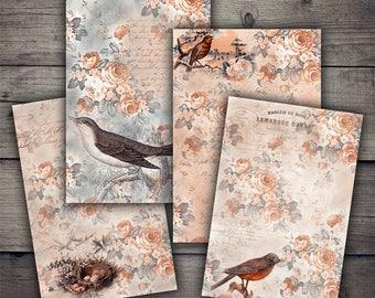 Birds Floral Backgrounds - Digital Paper - Instant Download Printables