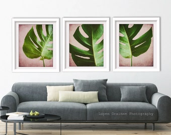 20% off - Botanical Print Set  - Tropical Wall Art - Set of Three Prints - Pink Green Living Room - Print Set of 3 - Nature Office Wall Art