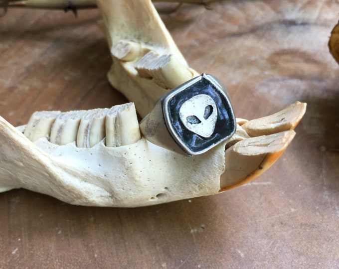 Unisex Take Me To Your Leader Enameled Signet Ring