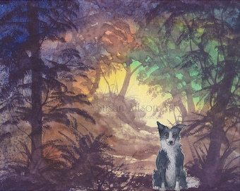 Border Collie dog 8x10 Susan Alison art print from watercolor painting sheepdog woodland scene forest landscape sunset evening sunlit trees