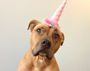 Dog Unicorn Headband, Unicorn, Unicorn Headband for Dogs, Dog Birthday Hat. Unicorn Dog Hat, Unicorn Horn, Dog Unicorn Hat, Unicorn Hat