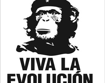 VIVA la EVOLUCION / EVOLUTION