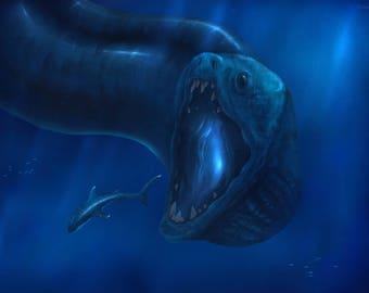 Sea Creature Wallpaper/Background