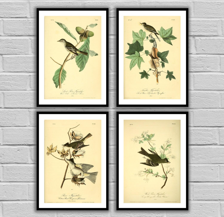 Vintage Bird and Botanical Print Set of 4 - Print or Canvas ...