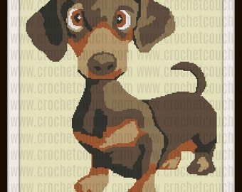 Dachshund Pup Afghan, Graph, Word Chart for SC, Word Chart for TSS