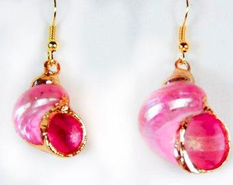 PINK SHELL EARRINGS, pink earrings, shell earrings, pink jewelry, shell jewelry, seashells, gold trim - 1957