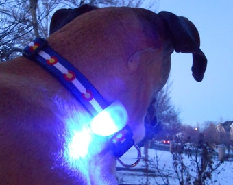 Dog collar, harness & leash light; flashing LED safety lite glows in dark; red, white, blue, pink, yellow, green, black or orange