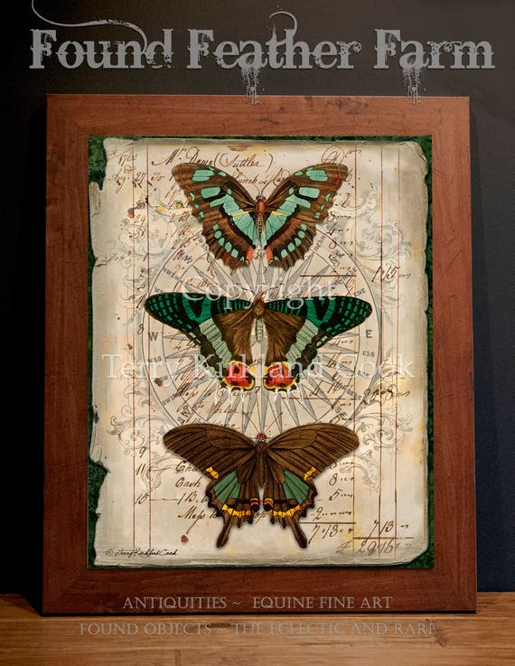"""Butterfly Trio ~ Original Vintage Art Collage 20"""" x 24""""Framed Giclee Print"""