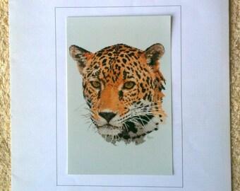 Jaguar Cross Stitch Chart Ross Originals Australia 1991 Counted Cross Stitch Chart Big Cat