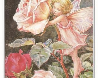 The Rose Fairy Cicely Mary Barker Flower Fairies Vintage Print 1995 Wall Art Nursery Decor Fairy Print Home Decor Print Fine Art