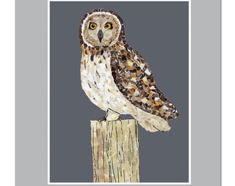 Owl Card, Short Eared Owl Card, Short Eared Owl, Owl on a post Card
