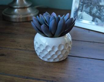 succulent pot; pottery handmade; small pot; small succulent pot; mini plant pod; ceramic small pot; small plant pod; handmade ceramic pot;
