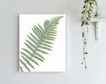 Lady Fern Print, Pressed Fern Botanical Artwork, Herbarium Fern Art Print, Big Fern Wall Gallery Art, Modern Nature Rustic Cottage Decor