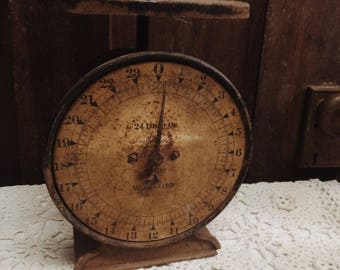 Antique Rusty Brown Scale 24 LB