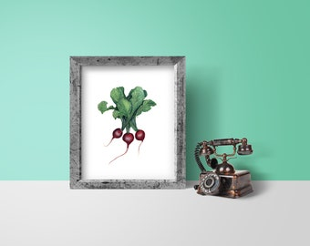 "Digital download - radishes pastel drawing, vegetable art, 8x10"", wall art, kitchen decor"