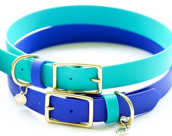 Large TWO-TONE Water Dog Buckle Collar, Waterproof Collar, Dirt-Proof Collar, Leather Free Collar, Harbor Hound Collar