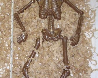 Chocolate Skeleton