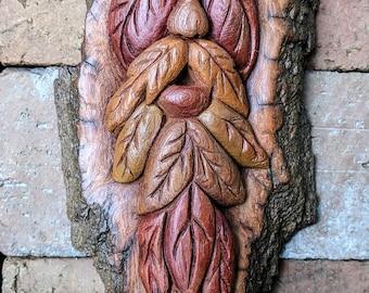 Greenman in Fall! Local NC Cottonwood Bark