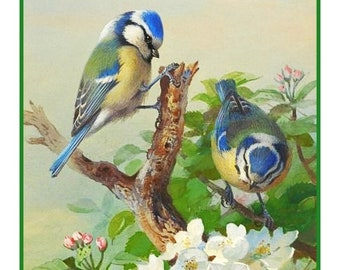 GREAT SALE DIGITAL Download Naturalist Archibald Thorburn's Bluetit Birds and Blossoms Counted Cross Stitch Chart