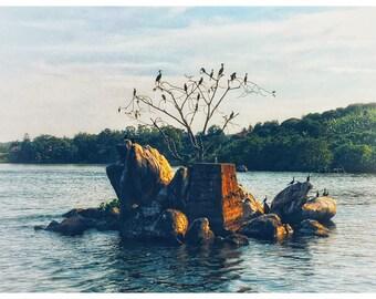 Island print, Wall Art, photography prints, River Nile, framed photographs