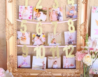 First Year Photo Banner |  Milestone Banner  |  Baby's First Birthday Banner  |  Gold First Year Photo Banner  | Monthly Photo Banner